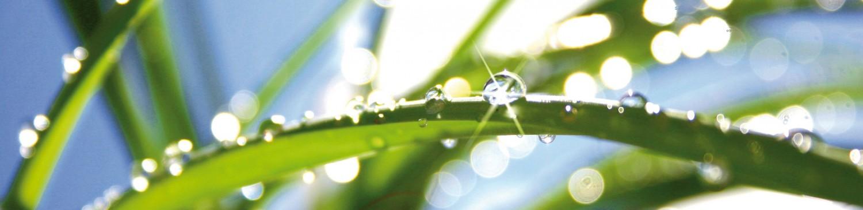 GUS – Gewässer-Umwelt-Schutz